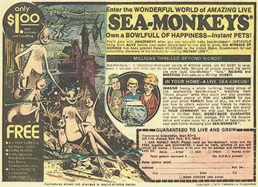 I remember these! Sea monkeys, Old comic books, Retro